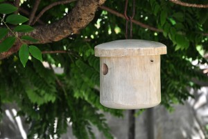 Mango Primitive Bird Home-L